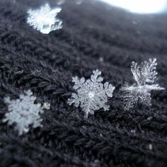 little snowflakes 'caught' & photographed  on a sweater