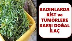 Natural Prescription Against Cysts and Tumors in Women - Pin Champion Outdoor Fotografie, Diet And Nutrition, Food And Drink, Flora, Herbs, Yummy Food, Weight Loss, Health, Recipes