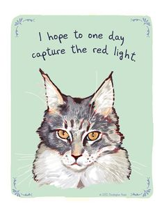 $12.00 - Tiny Confessions, Etsy- Maine Coon, I hope to one day capture the red light.