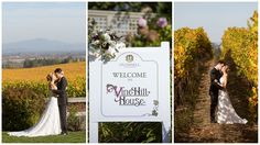 Wedding Inspiration: Elegant and Modern Wedding Design - Vine Hill House