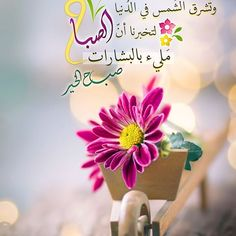 Good Morning Arabic, Good Morning Msg, Good Morning Photos, Morning Images, Morning Texts, Morning Quotes, Beautiful Morning Messages, Word Drawings, Happy Birthday Pictures