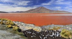 panorama of Laguna Colorada, Bolivia