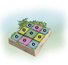 Steve Bender's Munchkin Garden with color key