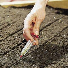 Adjustable Green Garden Plant Seed Dispenser Sower Planter Dial Seeder HA