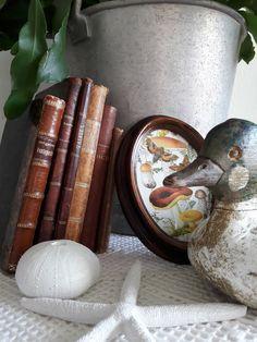 Fasters korthus: Love bird books ...