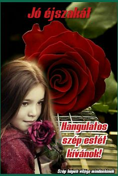 Album, Rose, Flowers, Plants, Movies, Movie Posters, Pink, Films, Film Poster
