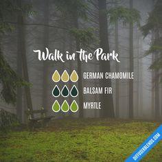 Walk in the Park — Essential Oil Diffuser Blend