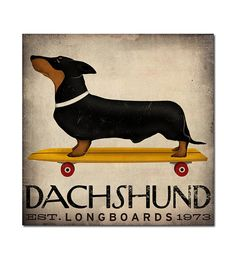 NEW ILLUSTRATION  DACHSHUND Wiener Dog Longboards by nativevermont, $69.00