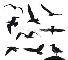 bird tattoo inspiration