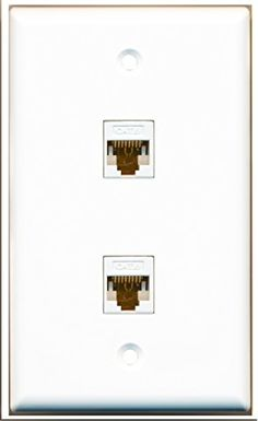 2 Port Cat5e Ethernet Female 1 Brush Port Wall Plate Decorative RiteAV