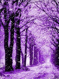 Dashing through the Snow - Chris Cannon I'm a sucker for gif's featuring snow. So I'm sharing a few and hoping that maybe we'll get some snow for Christmas. Purple Love, All Things Purple, Shades Of Purple, Pink Purple, Purple Stuff, Purple Sparkle, Purple Wallpaper, Cute Wallpaper Backgrounds, Pretty Wallpapers
