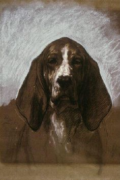 Rosa Bonheur Beautiful dog.  Reminds me of the English Springer Spaniel.  She owned me before she passed on.