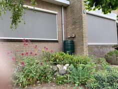 Stel, Garage Doors, Outdoor Structures, Outdoor Decor, Plants, Home Decor, Homemade Home Decor, Plant, Interior Design