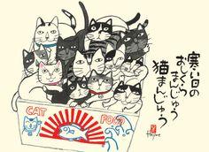 Asian cats