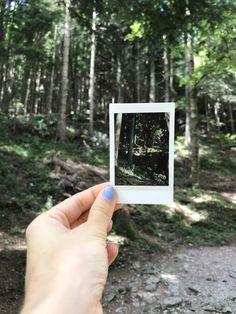 Taking polaroids in the forest Polaroids, Polaroid Film