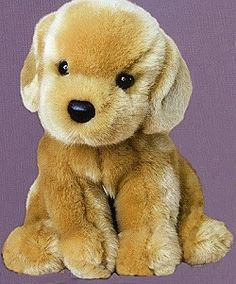 Do It Yourself-complete Dog Training Program @ http://dogtraining-4gswcqzf.thetruthfulreviews.com