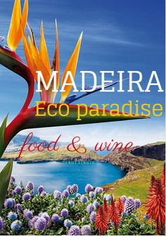 Tropical fruits, colorful birds, exotic waterfalls. Madeira is Europe's least explored island!