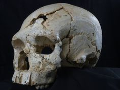 World's oldest murder mystery. Most likely the victim was killed for food or shelter but the evidence shows they were murdered.