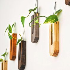 Wall decor / propagation station / Office decor / timber vases / gifting / wooden vase by FabianaLoschi on Etsy Wooden Vase, Wooden Walls, Diy Wall, Wall Decor, Propagation, Hanging Planters, Vases Decor, Office Decor, Plant Projects