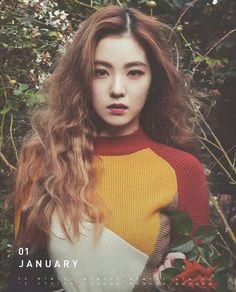 irene, red velvet, and kpop image Red Velvet アイリン, Irene Red Velvet, Red Velvet Wendy, Red Velvet Seulgi, Kpop Girl Groups, Kpop Girls, Korean Girl, Asian Girl, Korean Face