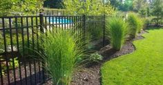 Ornamental Aluminum three rail fence around pool - Landscaping Photograpy Privacy Fence Landscaping, Landscaping Around Pool, Backyard Privacy, Backyard Fences, Garden Fencing, Backyard Landscaping, Landscaping Ideas, Fenced In Backyard Ideas, Landscaping Melbourne