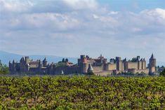 La silueta de la ciudad de Carcasona con las viñas en primer plano