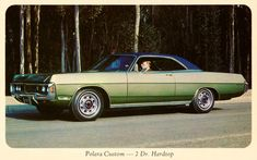 Dodge Polara Custom Hardtop 1970 Forest