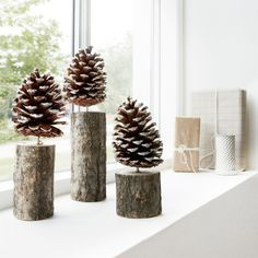 Pinecone on Wood Stand