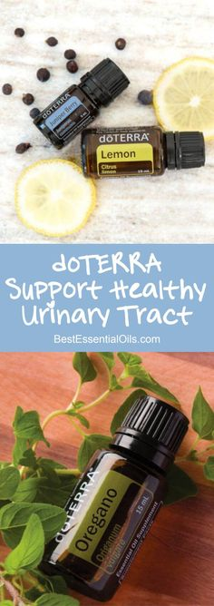 doTERRA Essential Oils to Support a Healthy Urinary Tract