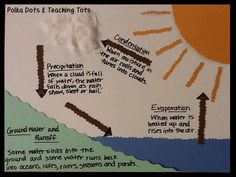 The Water Cycle Craft/Diagram