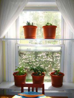 Fensterbank Deko Mit Pflanzen, Die Einen Kleinen Garten Erschaffen