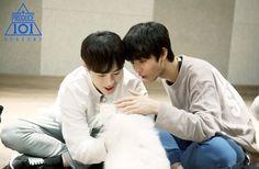 bae jinyoung pics (@archivebae) | Twitter