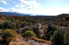 Chios Island Greece, Hiking Trails & Routes — A Greek Adventure