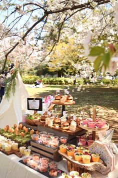 ARCH DAYS|理想のパーティーアイディアがきっと見つかる Outdoor Party Appetizers, Wedding Appetizers, Wedding Desserts, Wedding Appetizer Buffet, Dessert Table Decor, Affordable Vacations, Serving Table, Candy Buffet, Dessert Bars
