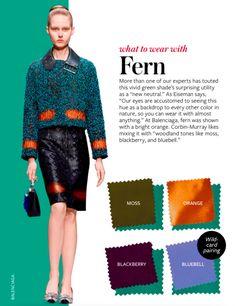 Fern - Color Crash course