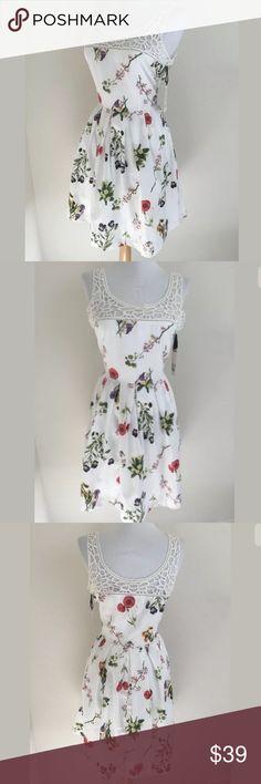 BB Dakota dress SKU: SD15016  Length Shoulder To Hem: 34.75 Bust: 34 Waist: 28 Fabric Content: 100% cotton BB Dakota Dresses