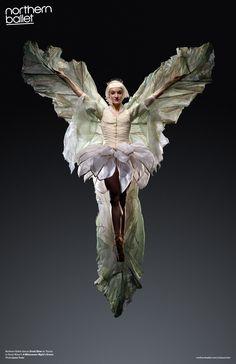 Northern Ballet dancer Dreda Blow as Titania in David Nixon's A Midsummer Night's Dream. Photo Jason Tozer.