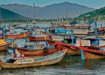 See Nha Trang Harbor on a tour of Vietnam