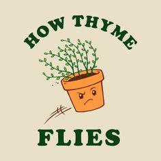 Funny Pun: Thyme Flies