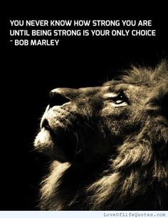 You never know how strong you are until being strong is your only choice - http://www.loveoflifequotes.com/?p=16391