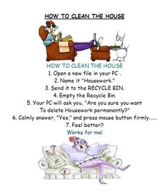 How to clean the house