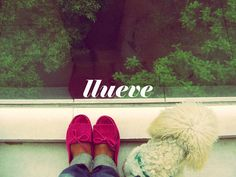 mirando la lluvia caer, via Flickr. Moccasins, Shoes, Fashion, Rain, Falling Down, Penny Loafers, Moda, Loafers, Zapatos