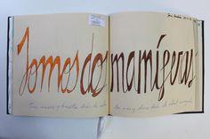 LAURA GUILLÉN 29-11-15 DIARIO SKETCHBOOK ARTE ART ARTISTA ARTIST AMOR LOVE BEBE BABY NEWMOM MAMA MOM LETRAS LETTERS MAMIFERAS DOS