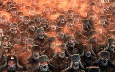 chinese soldiers training in sub-Zero temperature