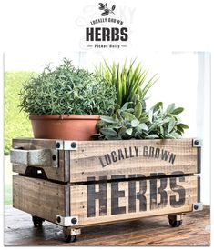Locally Grown Herbs garden stencil by Funky Junk's Old Sign Stencils Ikea Crates, Pallet Crates, Wood Crates, Garden Projects, Wood Projects, Wooden Shipping Crates, Funky Junk Interiors, Sign Stencils, Mini Plants