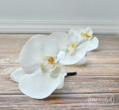 Orchid boutonniere, bout, button hole, tropical boutonniere, beach wedding, white boutonniere, white orchid, silk boutonnieres by blueorchidcreations on Etsy