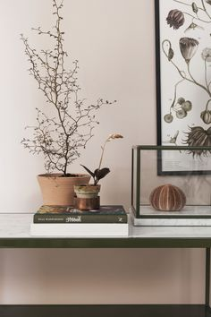 Mineral wallpaper from Boråstapeter Ferm Living Wallpaper, Of Wallpaper, Designer Wallpaper, Wallpaper Ideas, Stairs To Heaven, Interior Decorating, Interior Design, Home And Deco, Feng Shui