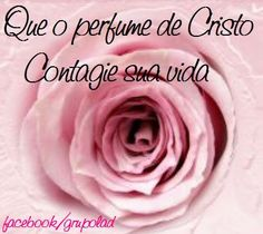 Que o perfume de Cristo contagie a sua vida - http://www.facebook.com/photo.php?fbid=514642735244651=a.427634170612175.96168.427626967279562=1=nf - 525302_514642735244651_700117268_n.jpg (429×382)