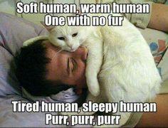 Soft human song