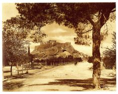 Λεωφόρος Β. Όλγας, 1900 / Athens, V. Olgas Avenue, 1900